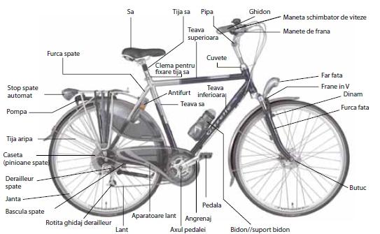 Componente bicicleta 2