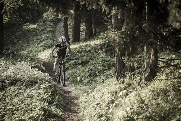 Trasee bicicleta Comana