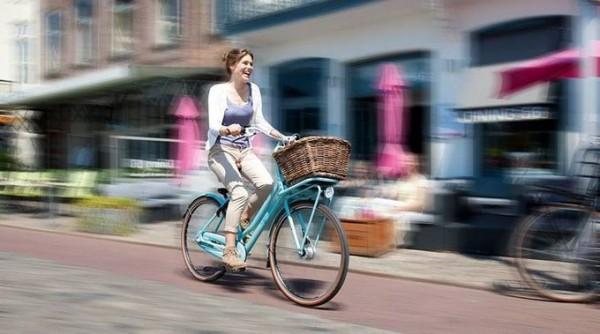 city bike Gazelle