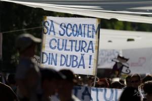 cultura din duba