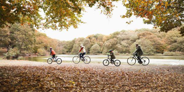 bicicleta-toamna