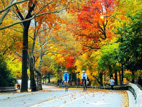 Biciclete plimbare toamna