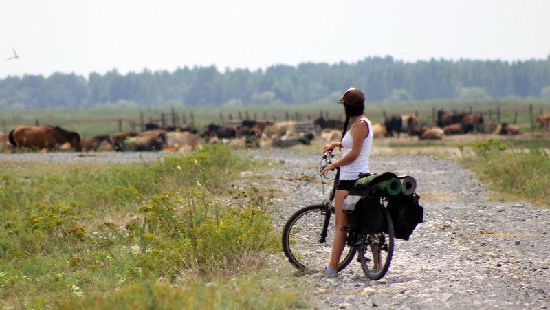 Cicloturism-trekking
