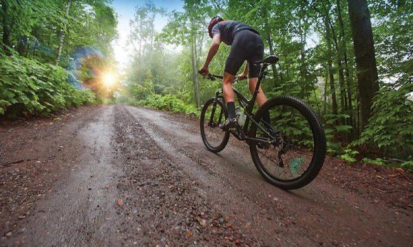 Trasee cu bicicleta