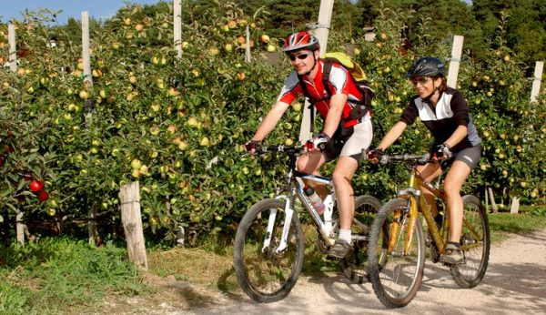 Traseu pentru bicicleta MTB