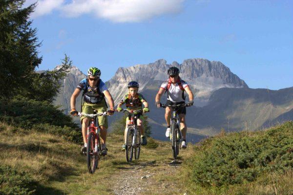 Trasee bicicleta Viscri